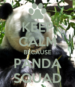 Poster: KEEP CALM BECAUSE PANDA SQUAD