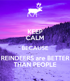 Poster: KEEP CALM BECAUSE REINDEERS are BETTER THAN PEOPLE