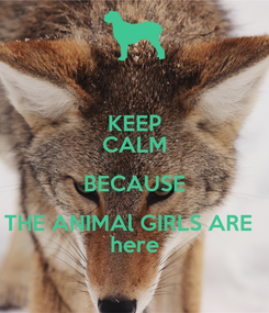 Poster: KEEP CALM BECAUSE THE ANIMAl GIRLS ARE   here