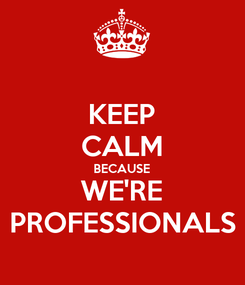Poster: KEEP CALM BECAUSE WE'RE PROFESSIONALS