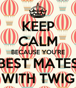 Poster: KEEP CALM BECAUSE YOU'RE BEST MATES WITH TWIG