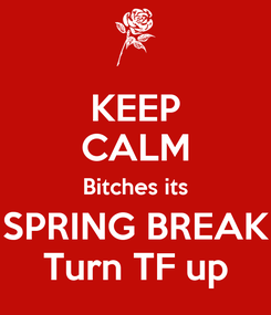 Poster: KEEP CALM Bitches its SPRING BREAK Turn TF up