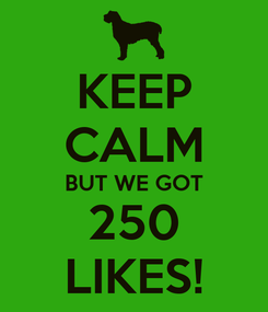 Poster: KEEP CALM BUT WE GOT 250 LIKES!
