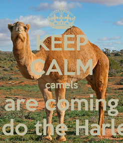 Poster: KEEP CALM camels are coming to do the Harlem