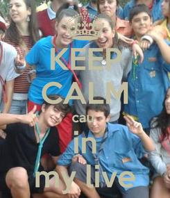 Poster: KEEP CALM cau  in my live