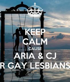 Poster: KEEP CALM CAUSE ARIA & CJ R GAY LESBIANS