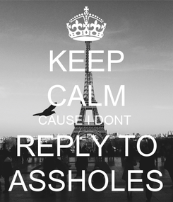 Poster: KEEP CALM CAUSE I DONT  REPLY TO ASSHOLES