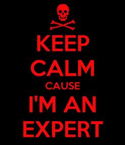 Poster: KEEP CALM CAUSE I'M AN EXPERT