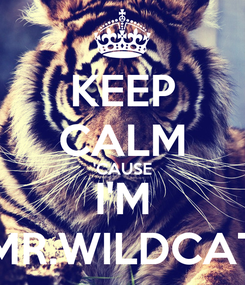 Poster: KEEP CALM 'CAUSE I'M MR.WILDCAT