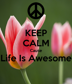 Poster: KEEP CALM Cause Life Is Awesome