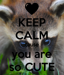 Poster: KEEP CALM cause you are so CUTE