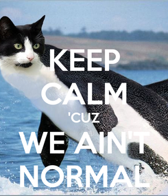 Poster: KEEP CALM 'CUZ WE AIN'T NORMAL