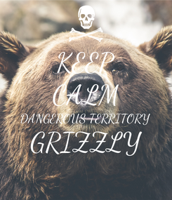 Poster: KEEP CALM DANGEROUS TERRITORY GRIZZLY