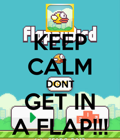 Poster: KEEP CALM DONT GET IN A FLAP!!!