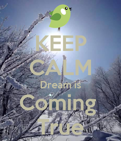 Poster: KEEP CALM Dream is Coming  True