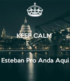 Poster: KEEP CALM     Esteban Pro Anda Aqui