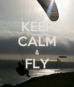 Poster: KEEP CALM & FLY
