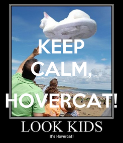 Poster: KEEP CALM,  HOVERCAT!