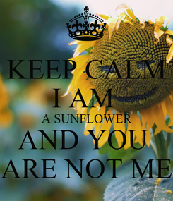 Poster: KEEP CALM I AM  A SUNFLOWER AND YOU  ARE NOT ME
