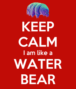 Poster: KEEP CALM I am like a WATER BEAR