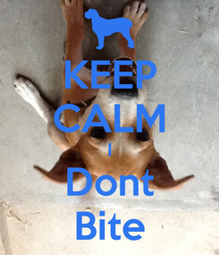 Poster: KEEP CALM I Dont Bite
