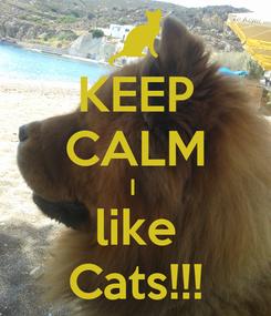 Poster: KEEP CALM I  like Cats!!!
