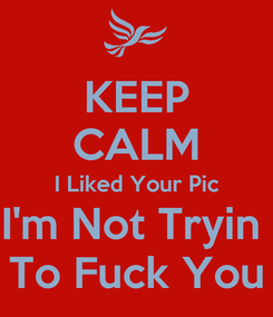 Poster: KEEP CALM I Liked Your Pic I'm Not Tryin  To Fuck You
