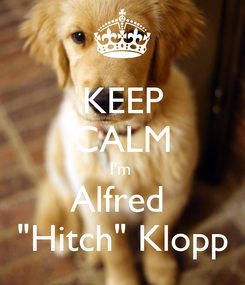 """Poster: KEEP CALM I'm  Alfred  """"Hitch"""" Klopp"""
