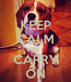 Poster: KEEP CALM I'M CARRY ON