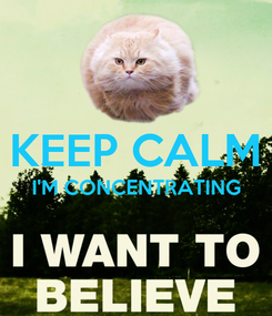 Poster:  KEEP CALM I'M CONCENTRATING