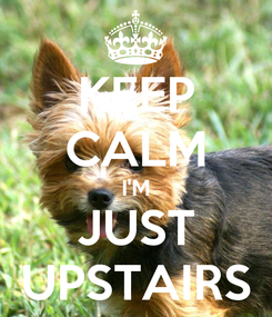 Poster: KEEP CALM I'M JUST UPSTAIRS