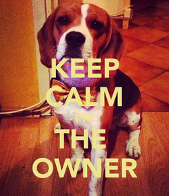 Poster: KEEP CALM I'M THE  OWNER