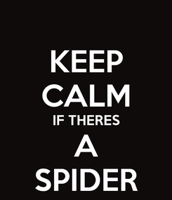 Poster: KEEP CALM IF THERES A SPIDER