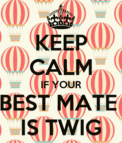 Poster: KEEP CALM IF YOUR BEST MATE  IS TWIG