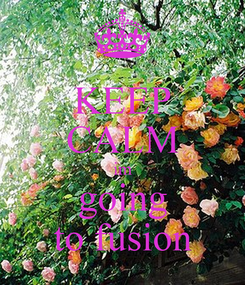 Poster: KEEP CALM im going to fusion