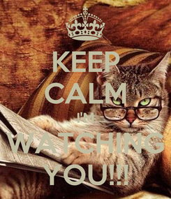Poster: KEEP CALM I'M WATCHING YOU!!!