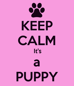 Poster: KEEP CALM  It's a PUPPY