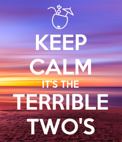 Poster: KEEP CALM IT'S THE TERRIBLE TWO'S