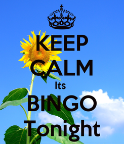 Poster: KEEP CALM Its  BINGO Tonight