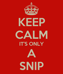Poster: KEEP CALM IT'S ONLY A SNIP