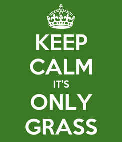 Poster: KEEP CALM IT'S ONLY GRASS