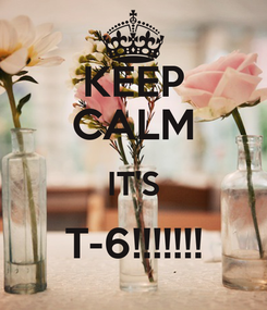 Poster: KEEP CALM IT'S T-6!!!!!!!
