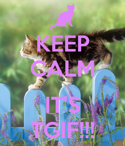 Poster: KEEP CALM  IT'S TGIF!!!