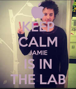 Poster: KEEP CALM JAMIE IS IN THE LAB