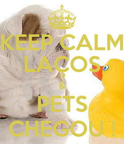 Poster: KEEP CALM LAÇOS & PETS CHEGOU !