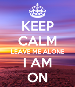 Poster: KEEP CALM LEAVE ME ALONE I AM ON