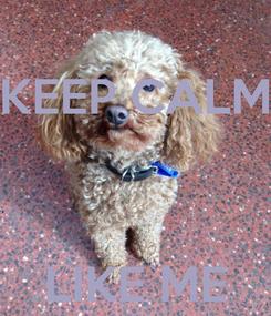 Poster: KEEP CALM    LIKE ME