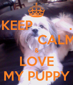 Poster: KEEP          .            CALM & LOVE MY PUPPY