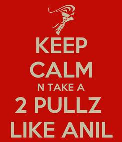 Poster: KEEP CALM N TAKE A 2 PULLZ  LIKE ANIL