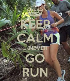 Poster: KEEP CALM .....NEVER GO RUN